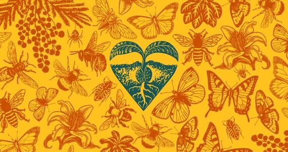 oranssilla taustalla kuvia kasveista ja hyönteisistä. Keskellä kuvaa vihreä piirros, jossa maasta kasvava kasvi lehtineen ja juurineen muodostaa sydämen.
