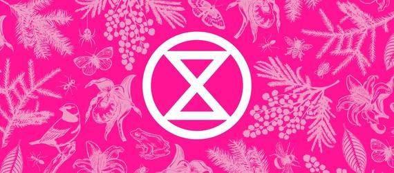 Tumman pinkki tausta, jolla on vaalean pinkkejä piirroksia kasveista, linnuista ja hyönteisistä. Keskellä valkoinen Elokapinan merkki.